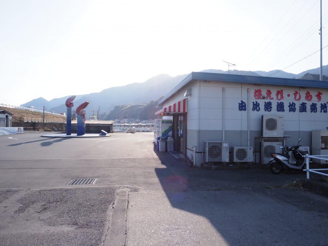 桜えびしらす由比港漁協直売所