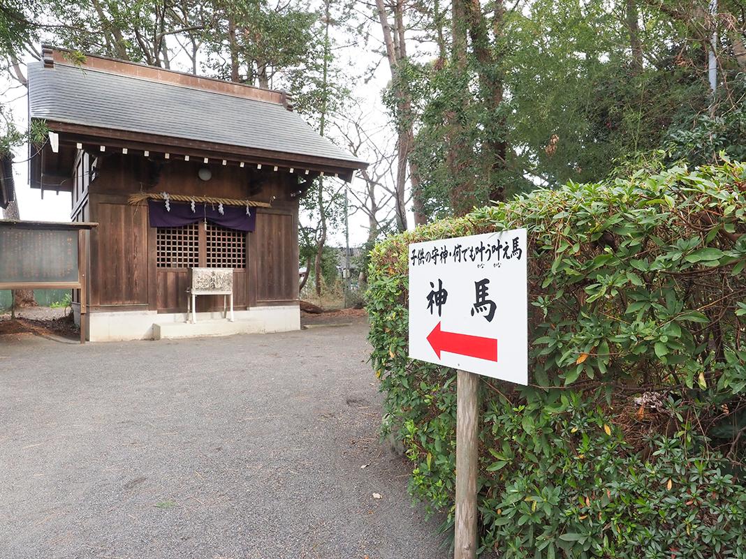 三保の松原_御穂神社の神馬
