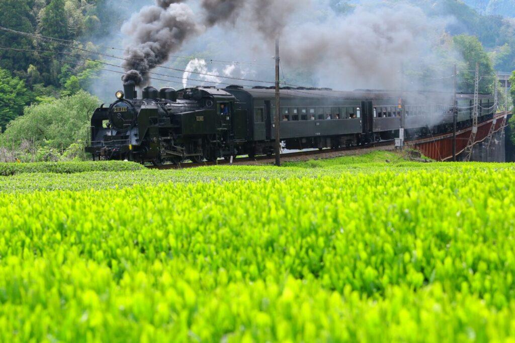奥大井湖上駅